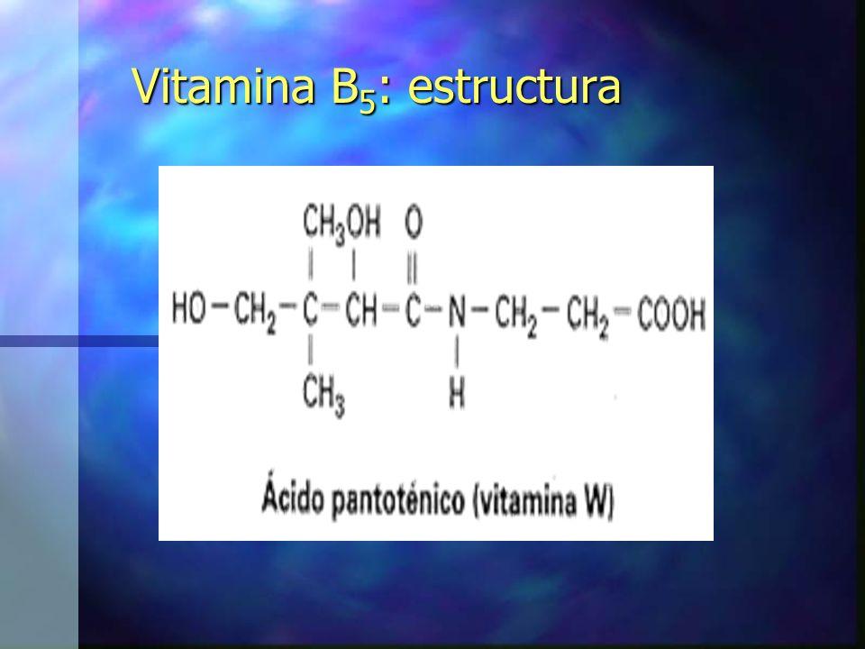 Vitamina B5: estructura