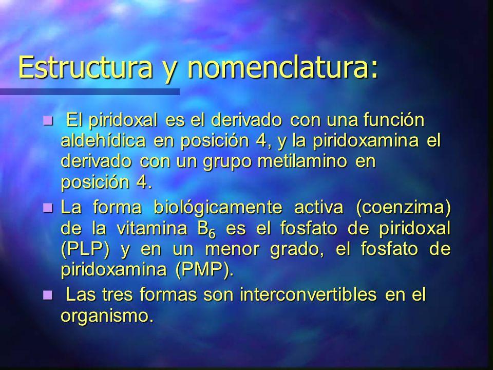 Estructura y nomenclatura: