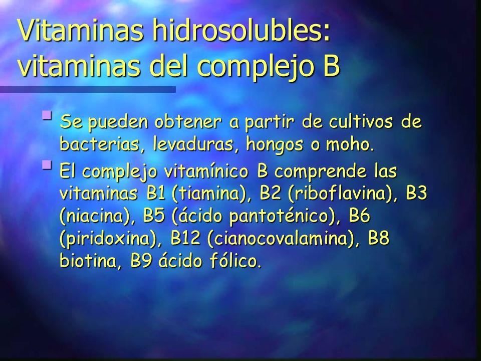 Vitaminas hidrosolubles: vitaminas del complejo B