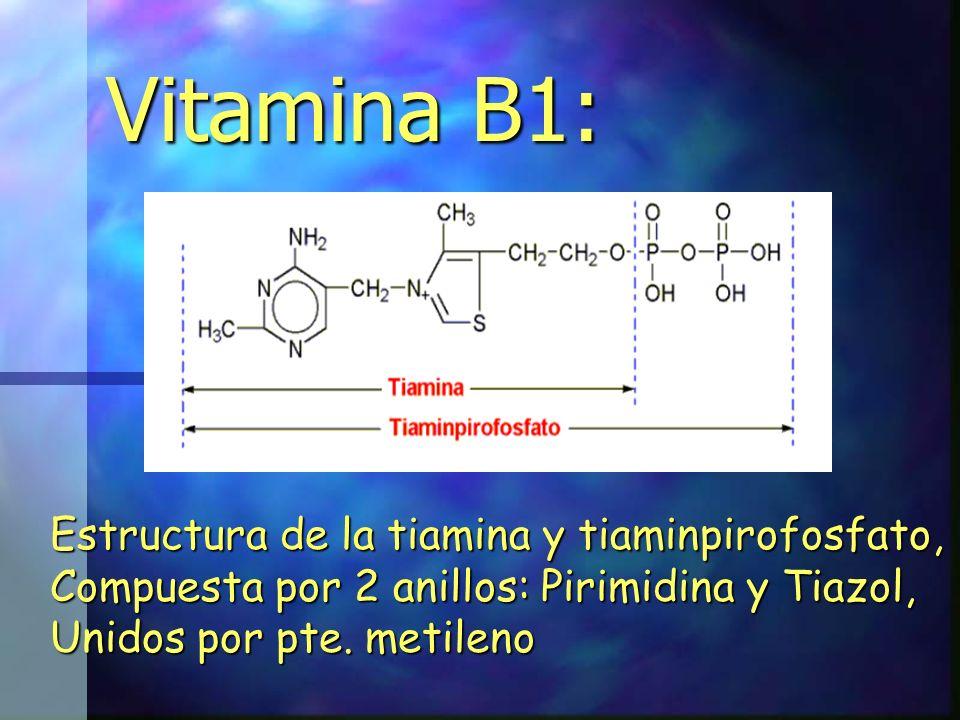 Vitamina B1: Estructura de la tiamina y tiaminpirofosfato,