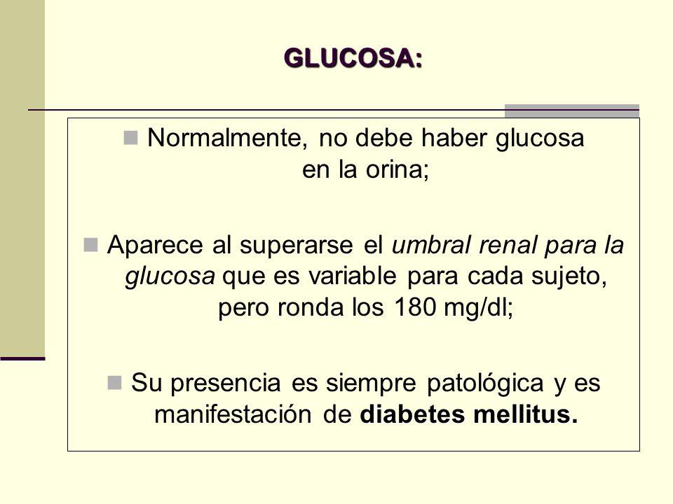 Normalmente, no debe haber glucosa en la orina;