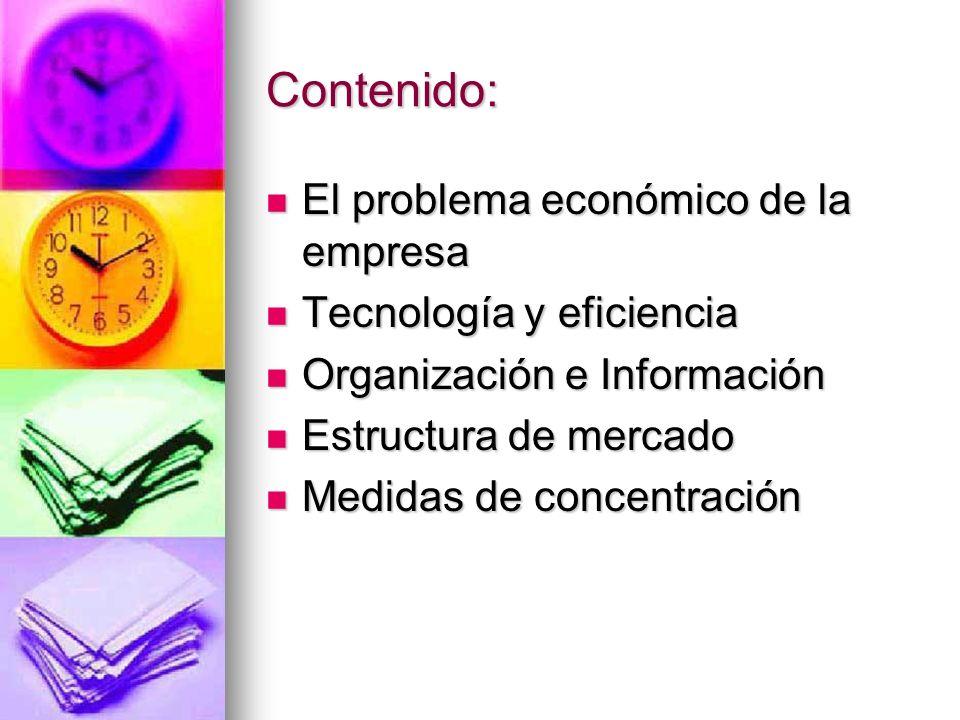 Contenido: El problema económico de la empresa Tecnología y eficiencia
