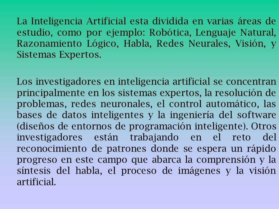 La Inteligencia Artificial esta dividida en varias áreas de estudio, como por ejemplo: Robótica, Lenguaje Natural, Razonamiento Lógico, Habla, Redes Neurales, Visión, y Sistemas Expertos.