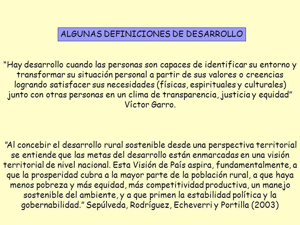 ALGUNAS DEFINICIONES DE DESARROLLO
