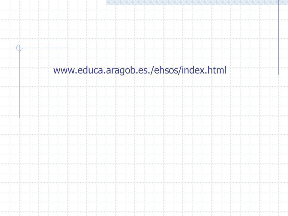www.educa.aragob.es./ehsos/index.html