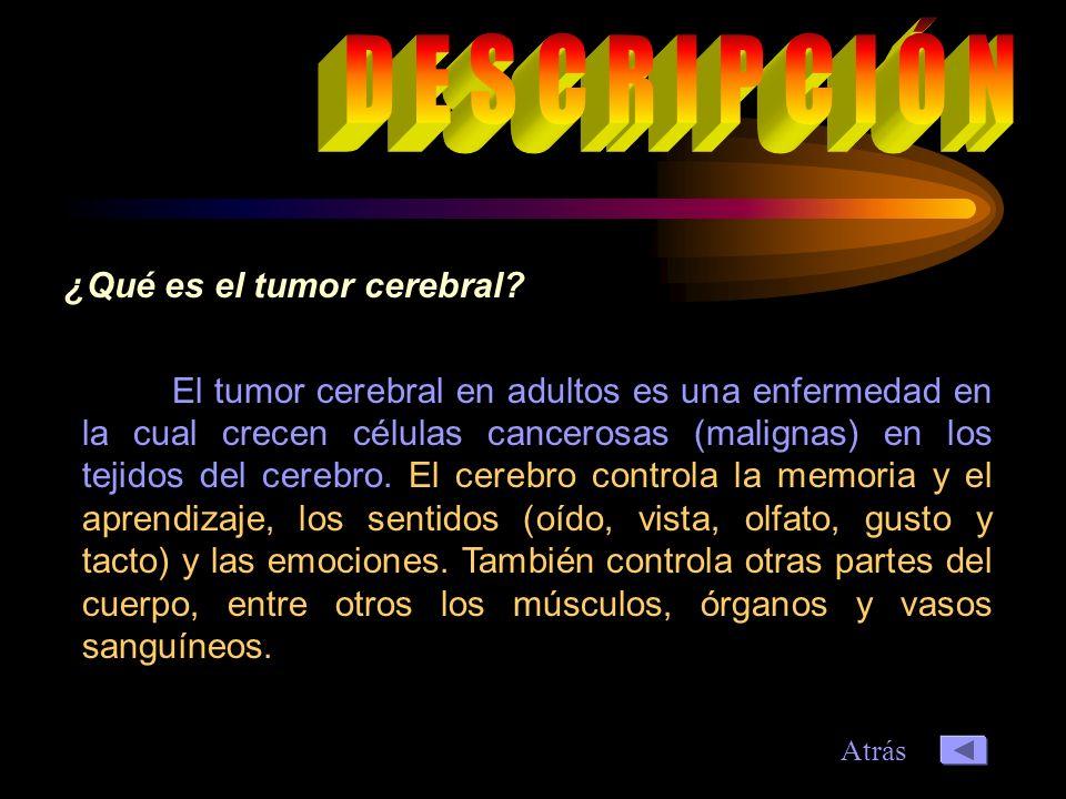 D E S C R I P C I Ó N ¿Qué es el tumor cerebral