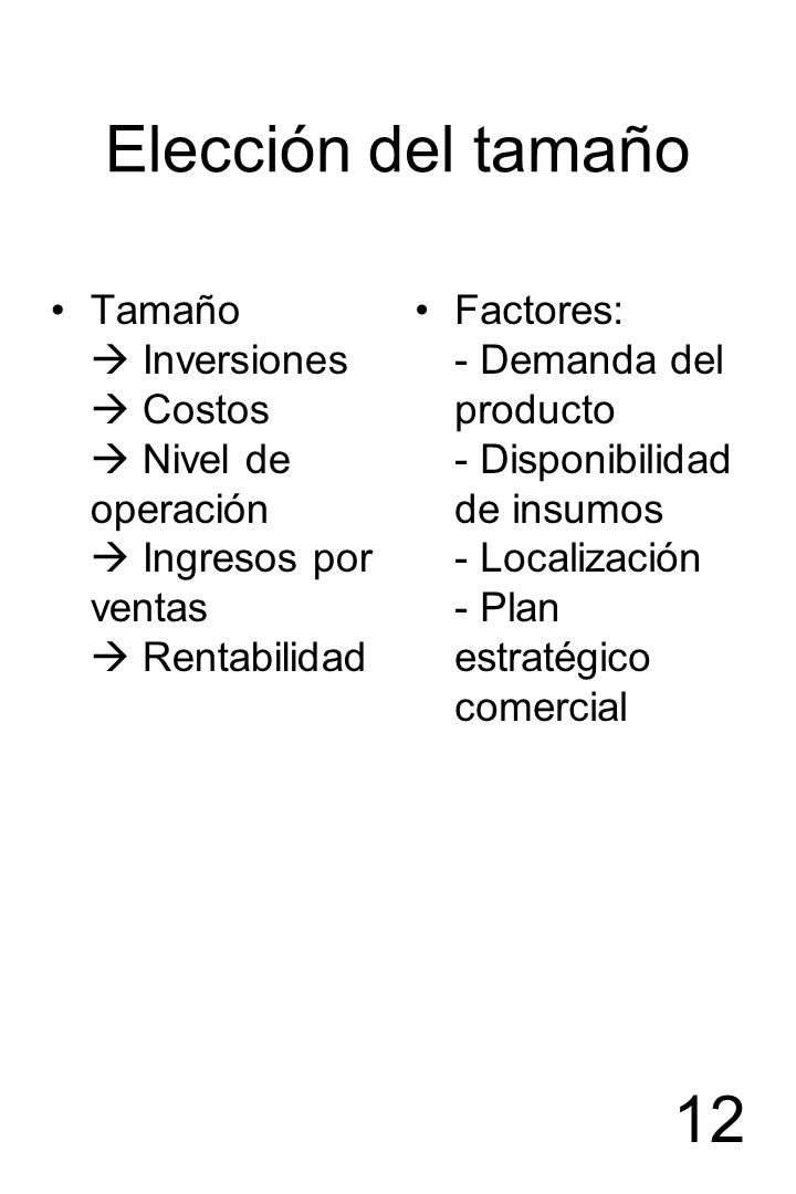 Elección del tamañoTamaño  Inversiones  Costos  Nivel de operación  Ingresos por ventas  Rentabilidad.
