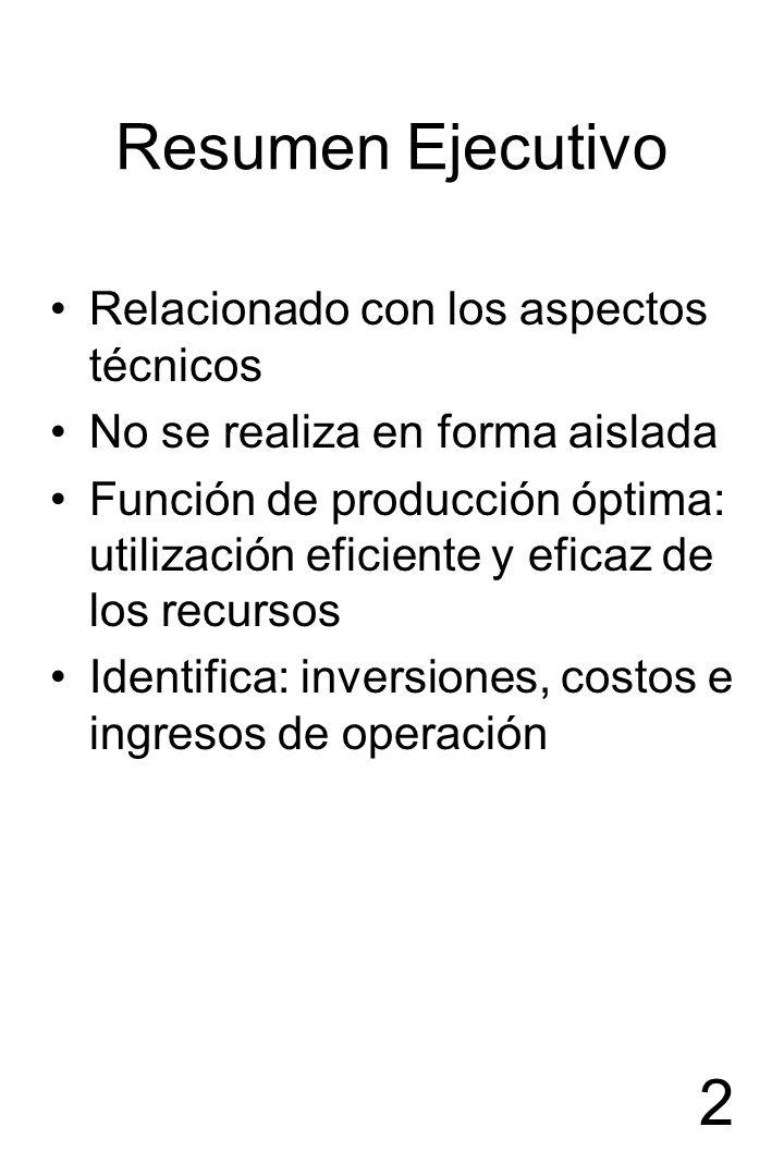 Resumen Ejecutivo Relacionado con los aspectos técnicos