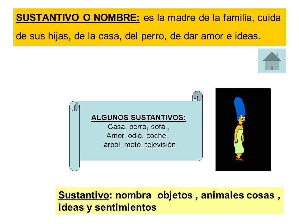 Sustantivo: nombra objetos , animales cosas , ideas y sentimientos