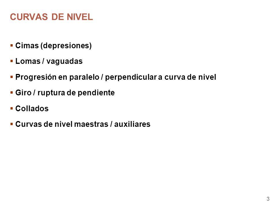CURVAS DE NIVEL Cimas (depresiones) Lomas / vaguadas