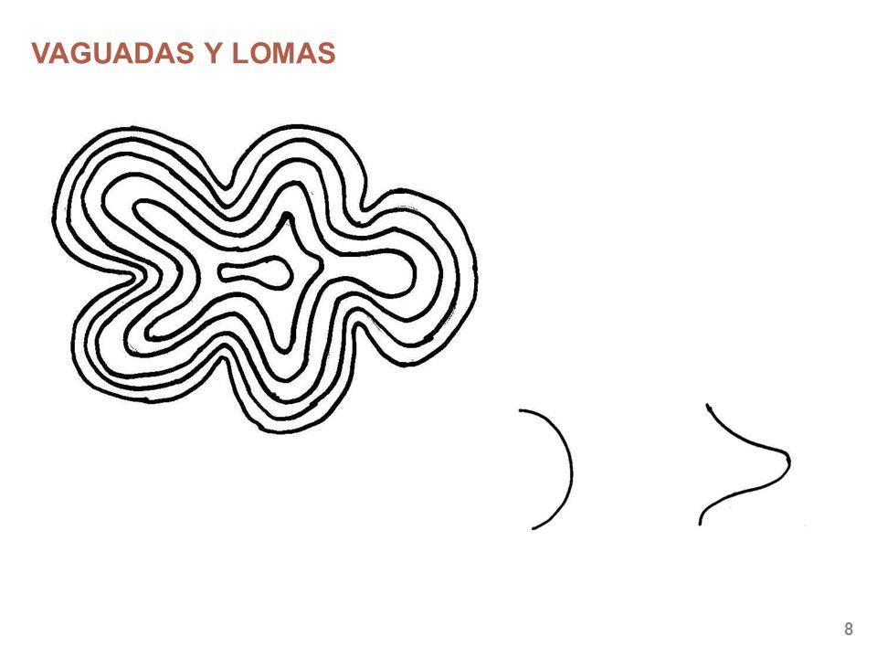 VAGUADAS Y LOMAS