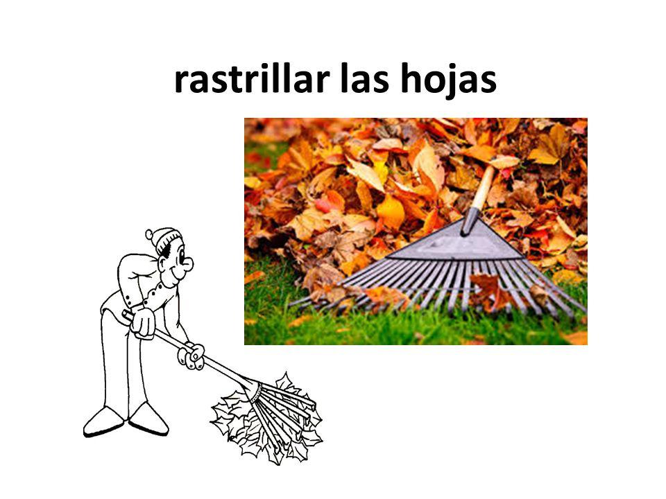 rastrillar las hojas