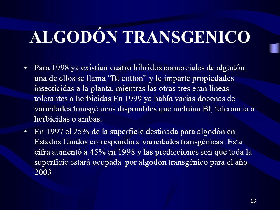 ALGODÓN TRANSGENICO