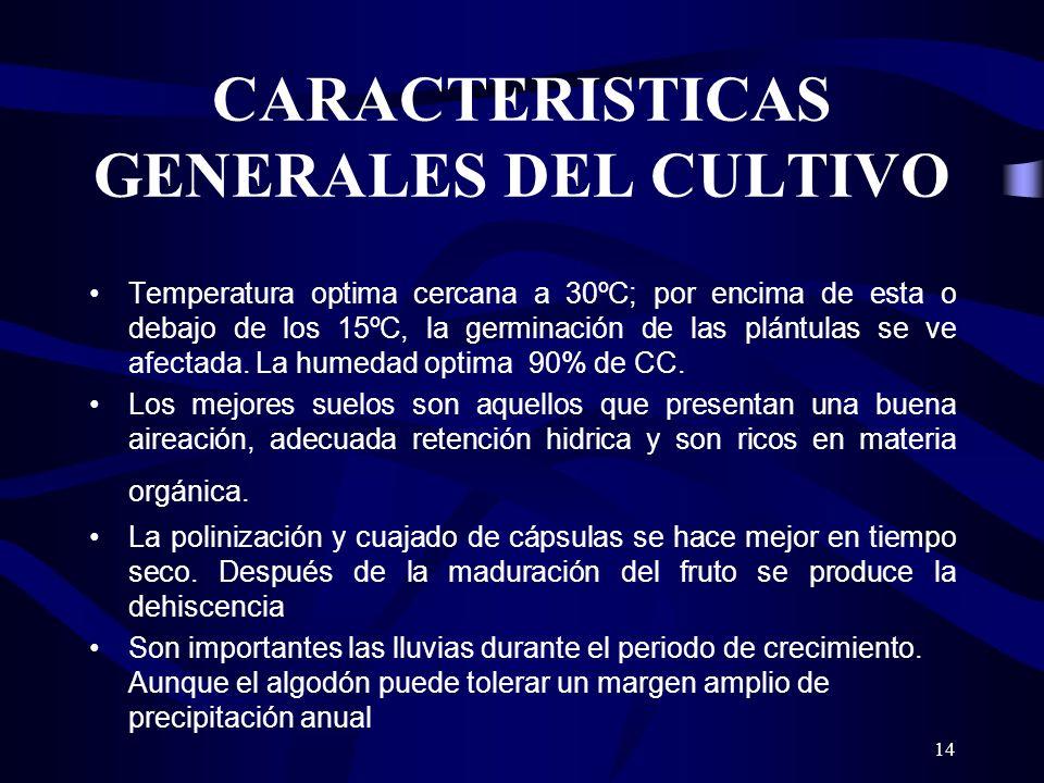 CARACTERISTICAS GENERALES DEL CULTIVO