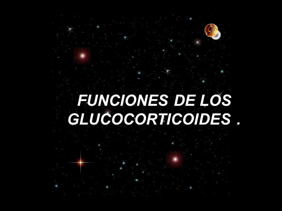 FUNCIONES DE LOS GLUCOCORTICOIDES .