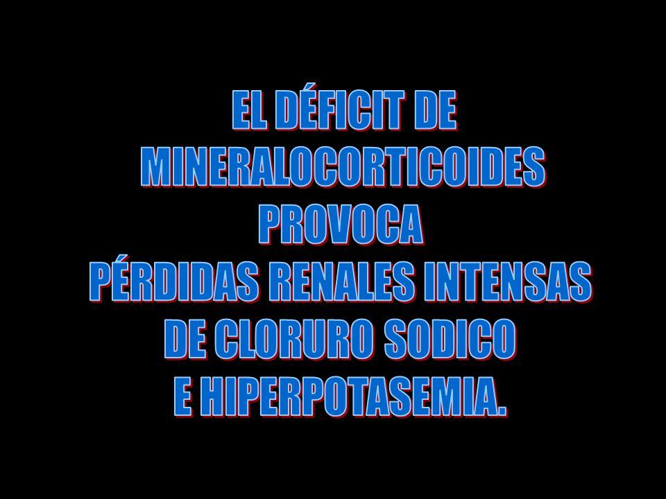 PÉRDIDAS RENALES INTENSAS