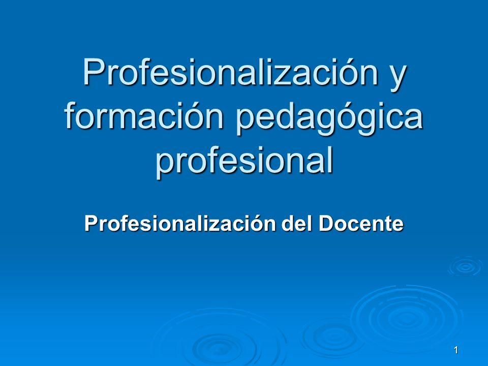 Profesionalización y formación pedagógica profesional
