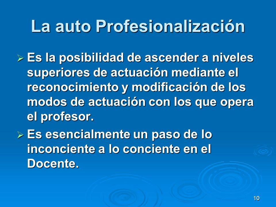 La auto Profesionalización