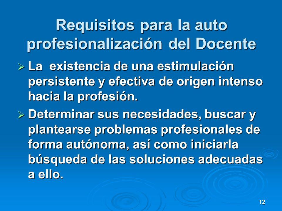 Requisitos para la auto profesionalización del Docente