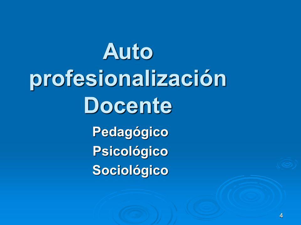 Auto profesionalización Docente