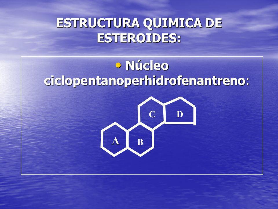 ESTRUCTURA QUIMICA DE ESTEROIDES:
