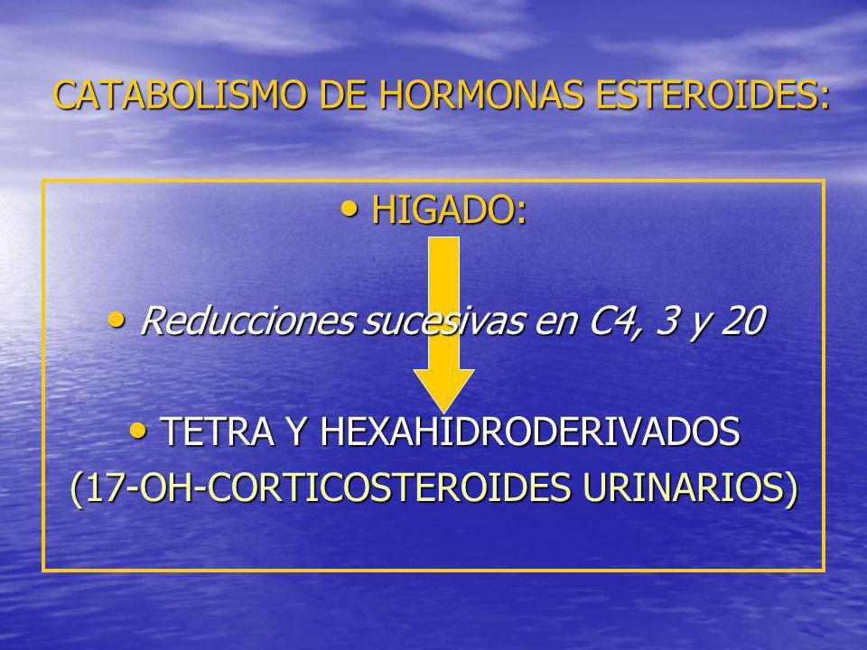 CATABOLISMO DE HORMONAS ESTEROIDES: