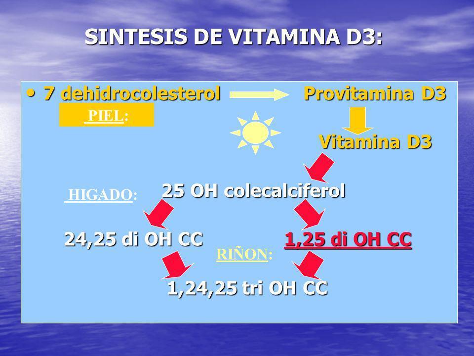 SINTESIS DE VITAMINA D3: