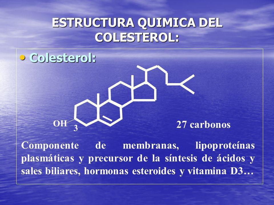 ESTRUCTURA QUIMICA DEL COLESTEROL: