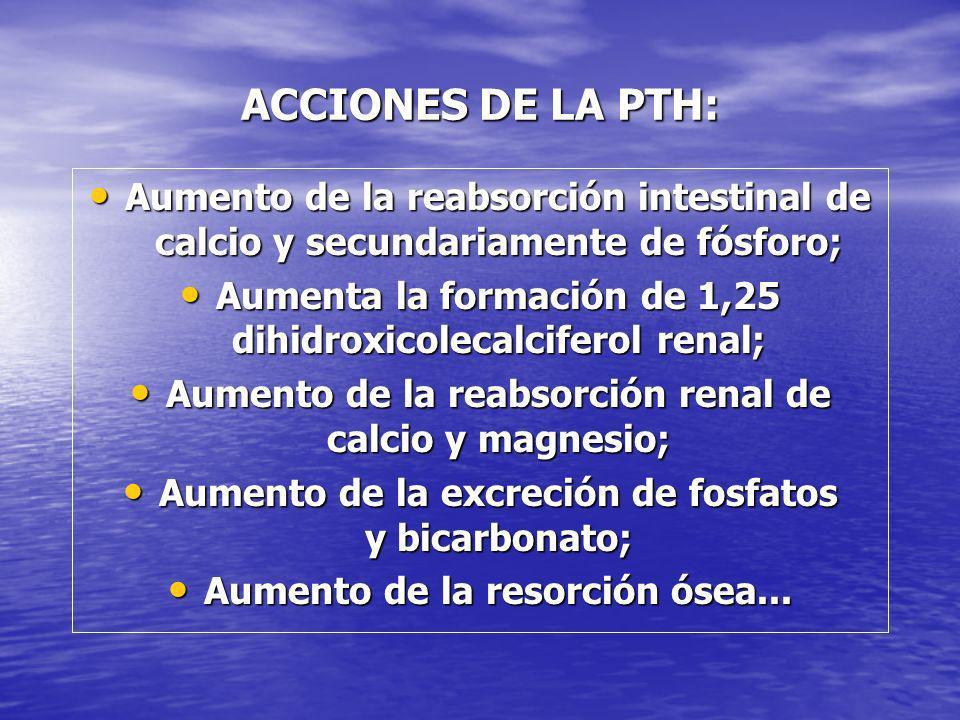 ACCIONES DE LA PTH: Aumento de la reabsorción intestinal de calcio y secundariamente de fósforo;