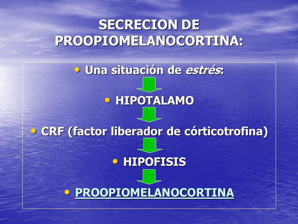 SECRECION DE PROOPIOMELANOCORTINA: