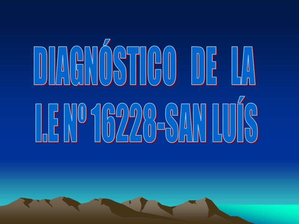DIAGNÓSTICO DE LA I.E Nº 16228-SAN LUÍS
