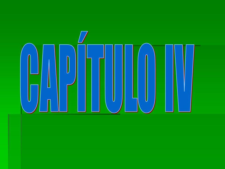 CAPÍTULO IV