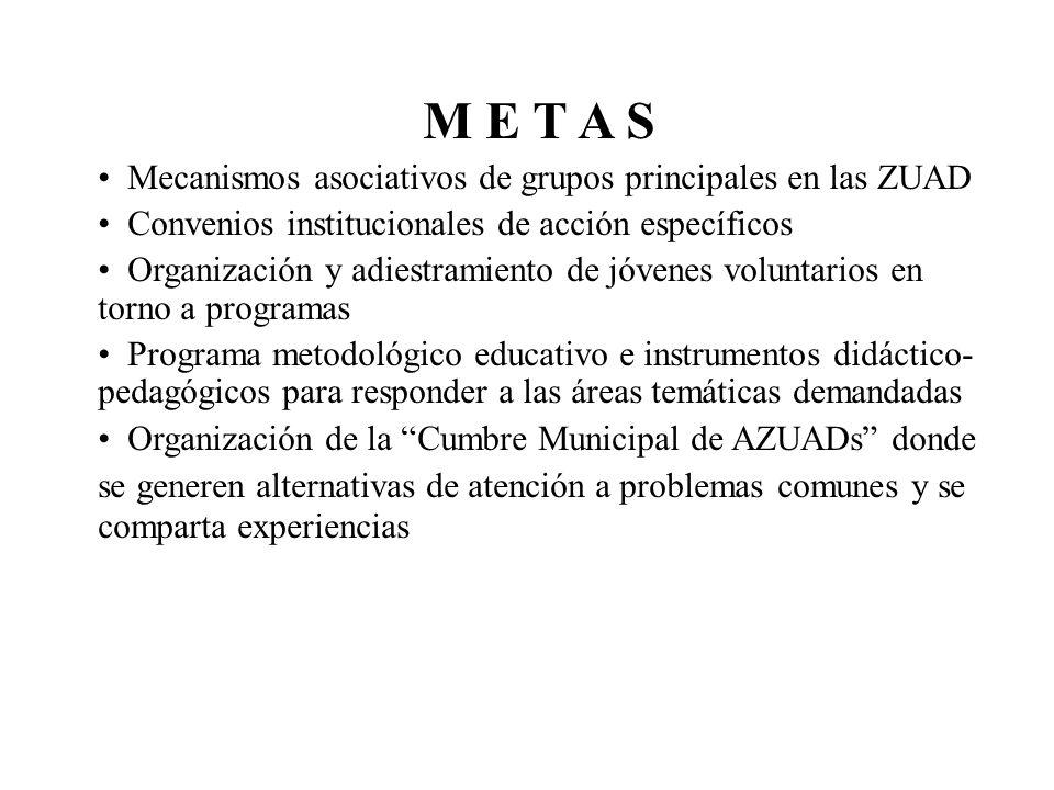 M E T A S Mecanismos asociativos de grupos principales en las ZUAD