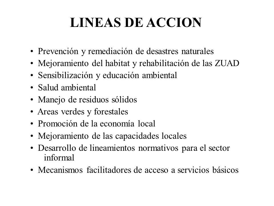 LINEAS DE ACCION Prevención y remediación de desastres naturales