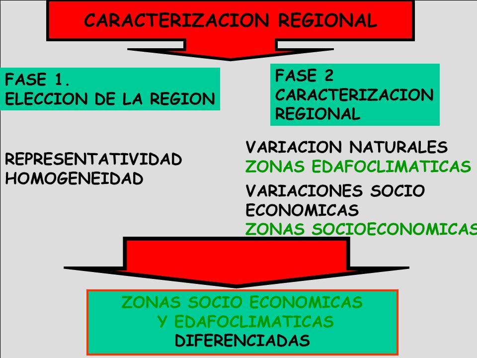 CARACTERIZACION REGIONAL