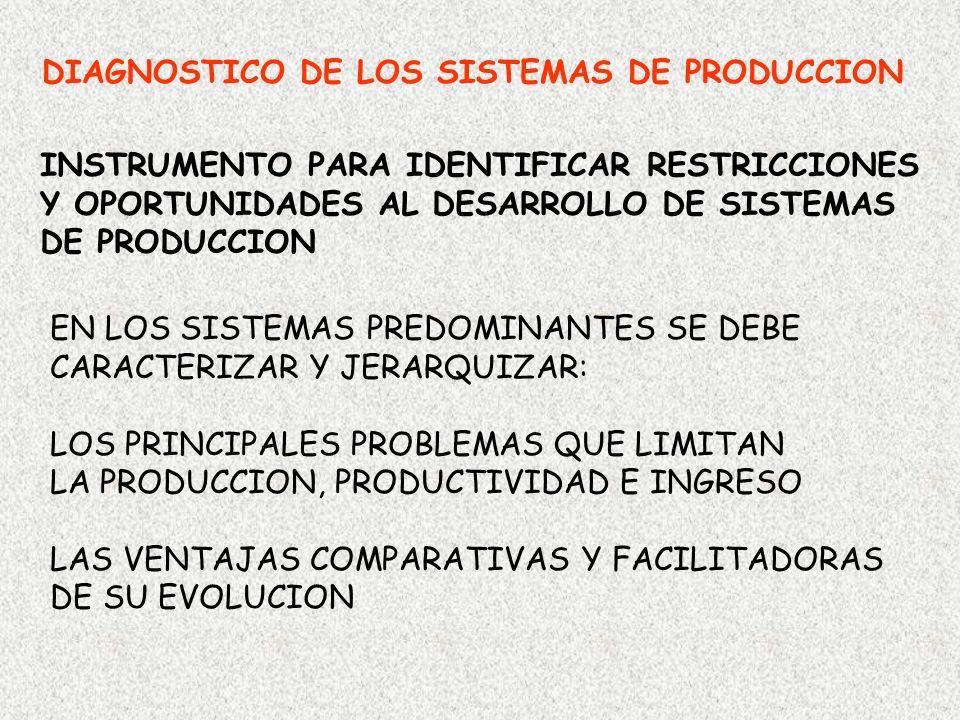 DIAGNOSTICO DE LOS SISTEMAS DE PRODUCCION