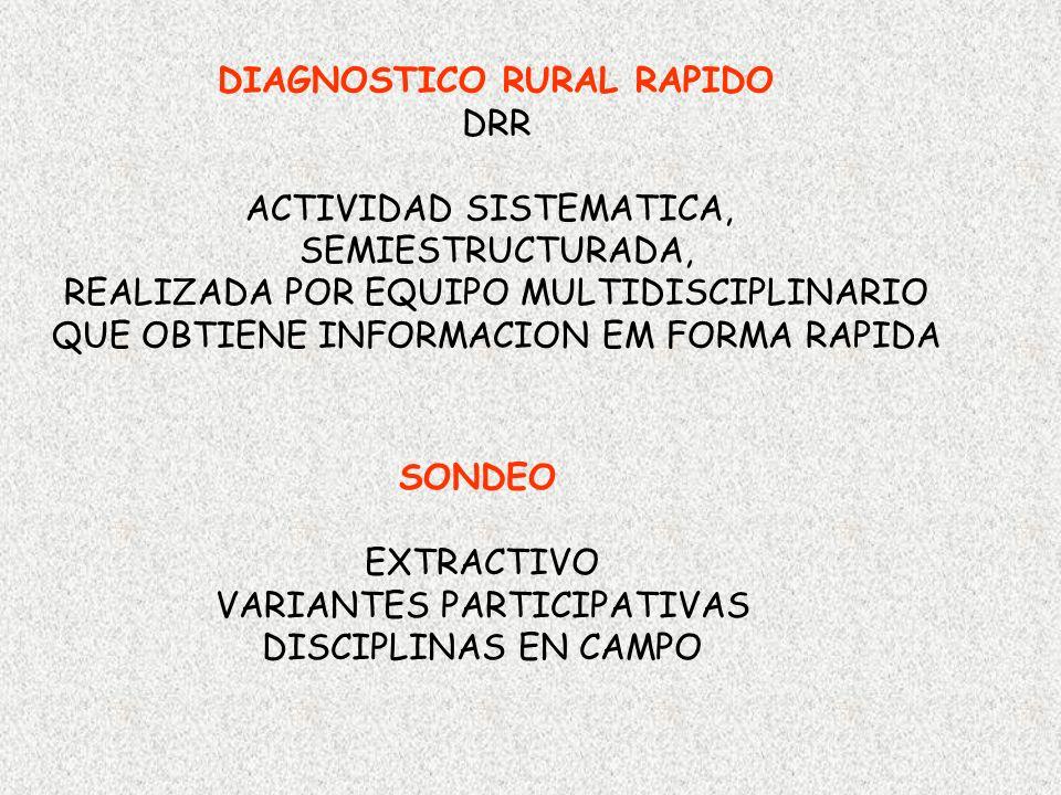 DIAGNOSTICO RURAL RAPIDO DRR ACTIVIDAD SISTEMATICA, SEMIESTRUCTURADA,