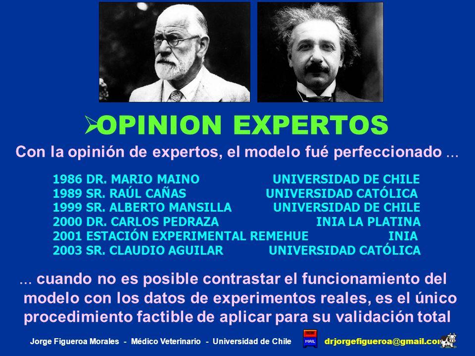OPINION EXPERTOS Con la opinión de expertos, el modelo fué perfeccionado ... 1986 DR. MARIO MAINO UNIVERSIDAD DE CHILE.