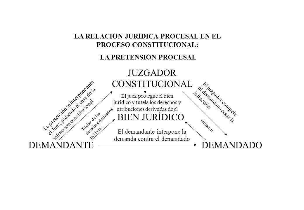 JUZGADOR CONSTITUCIONAL