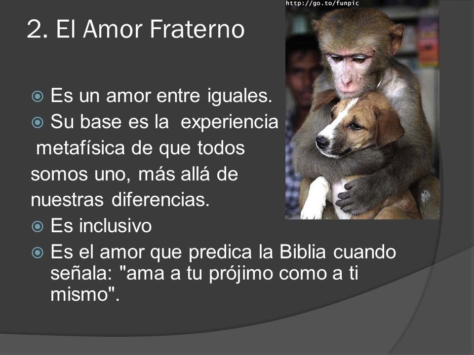 2. El Amor Fraterno Es un amor entre iguales.