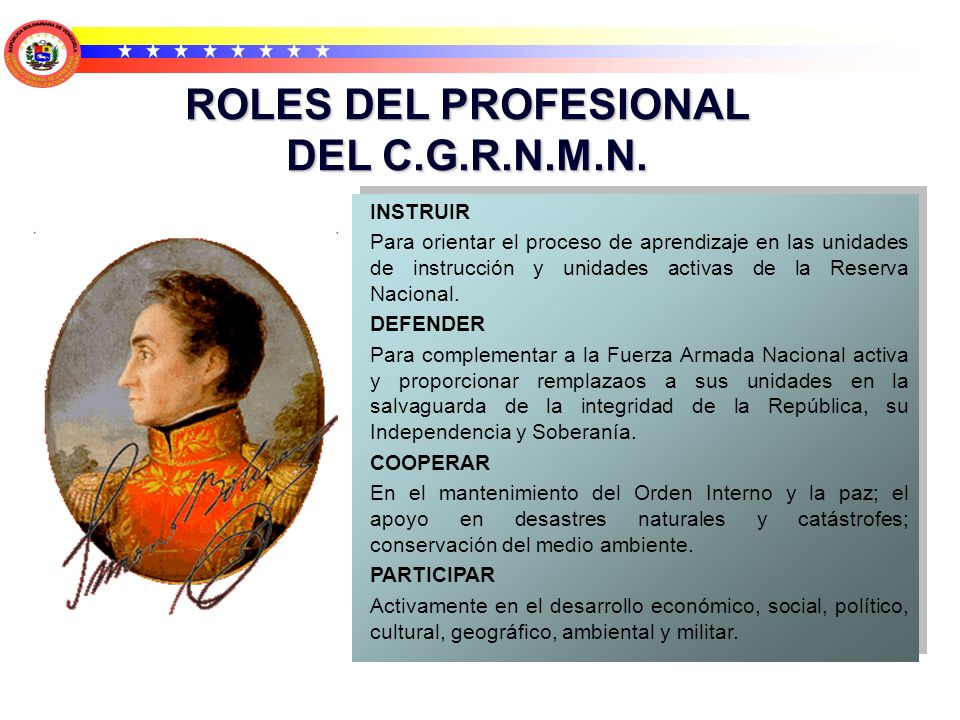 ROLES DEL PROFESIONAL DEL C.G.R.N.M.N.