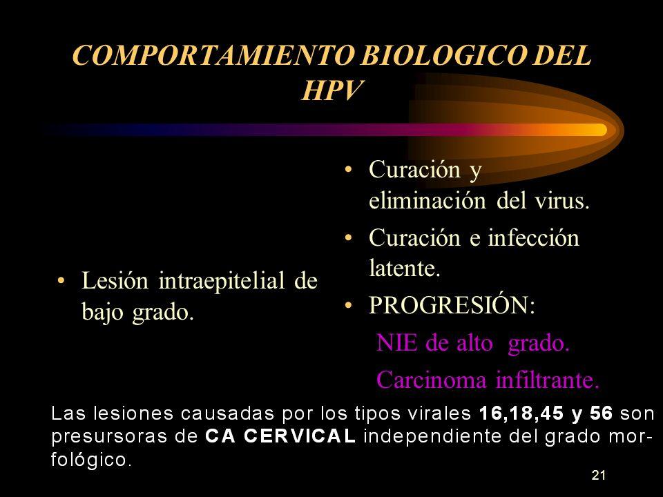 COMPORTAMIENTO BIOLOGICO DEL HPV
