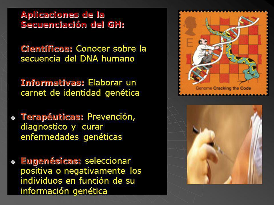 Científicos: Conocer sobre la secuencia del DNA humano