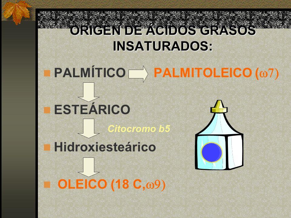 ORIGEN DE ÁCIDOS GRASOS INSATURADOS:
