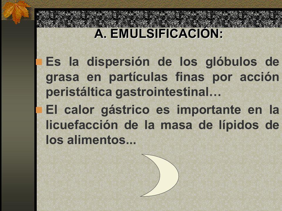 A. EMULSIFICACIÓN: Es la dispersión de los glóbulos de grasa en partículas finas por acción peristáltica gastrointestinal…