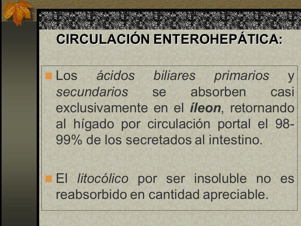 CIRCULACIÓN ENTEROHEPÁTICA: