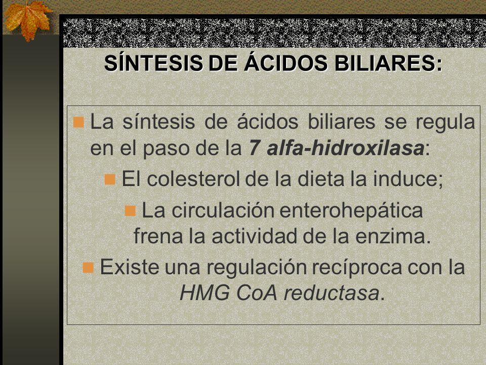 SÍNTESIS DE ÁCIDOS BILIARES: