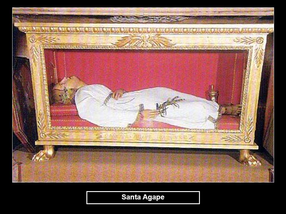 Santa Agape