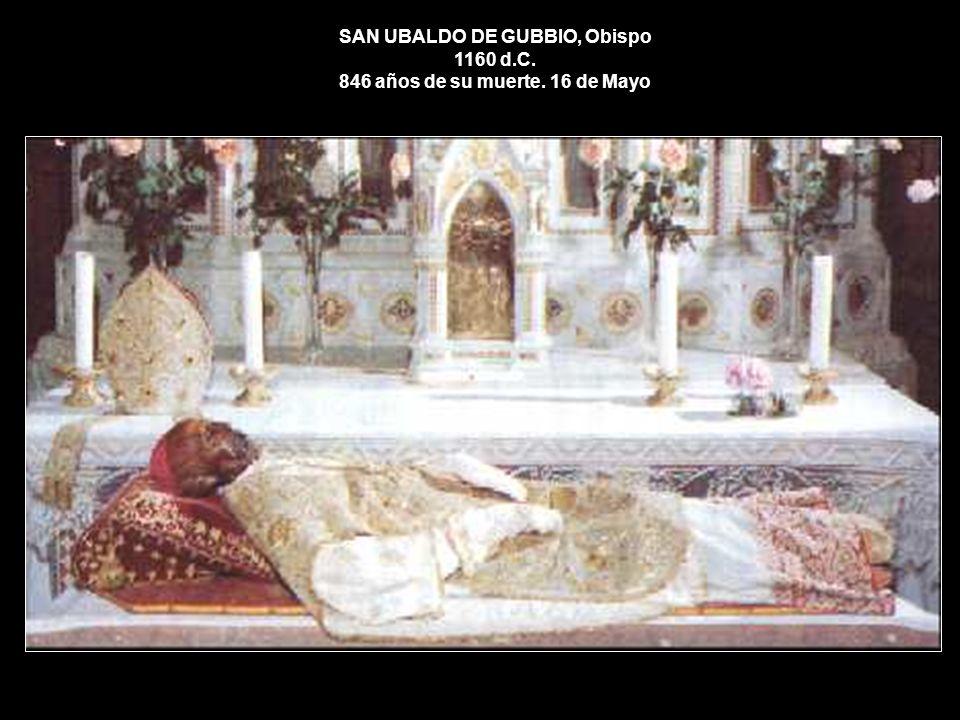 SAN UBALDO DE GUBBIO, Obispo 1160 d. C. 846 años de su muerte
