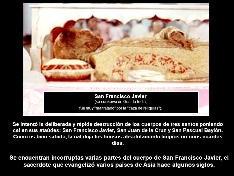 San Francisco Javier (se conserva en Goa, la India, fue muy maltratado por la caza de reliquias ).
